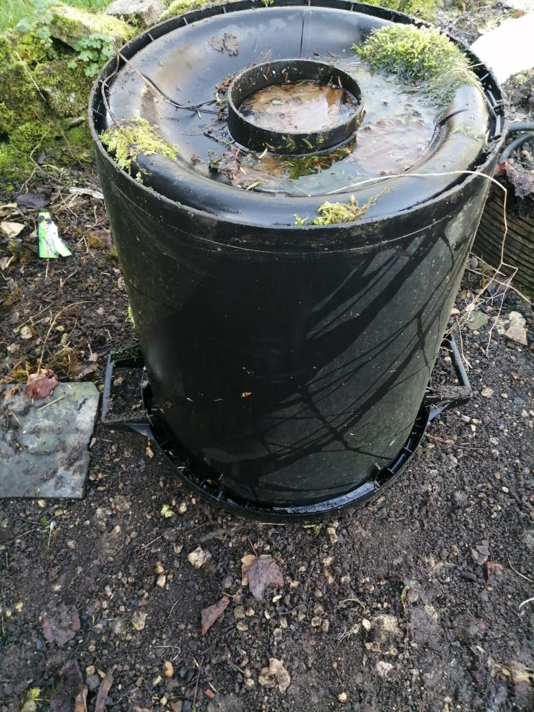 Forcing rhubarb Pot