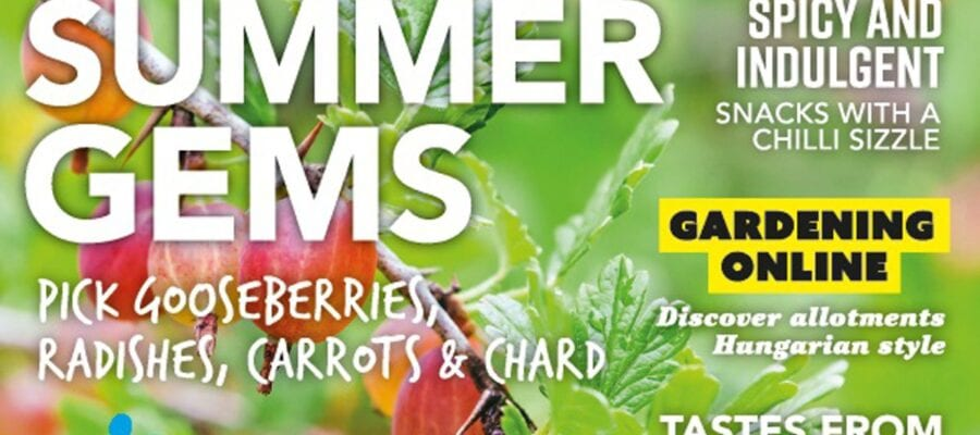 July issue of Kitchen Garden out now!