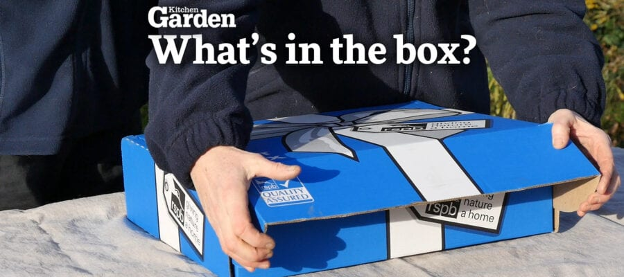 Video: What's in the Box?