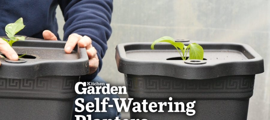 Video: Self-Watering Planters