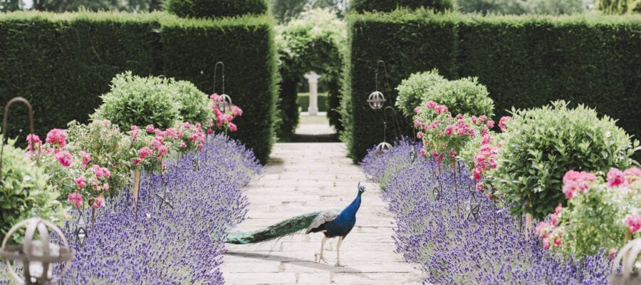 Gorgeous gardens to open for charity