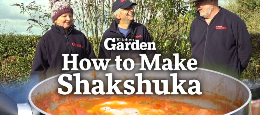 Video: How to Make Shakshuka