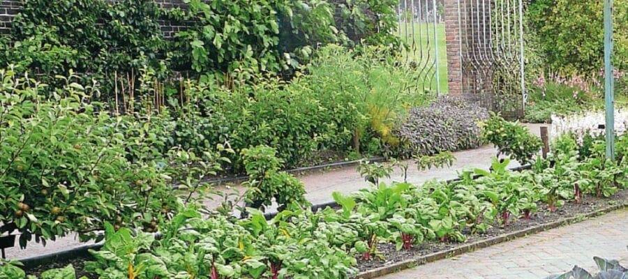 Bountiful & Botanical In Wales