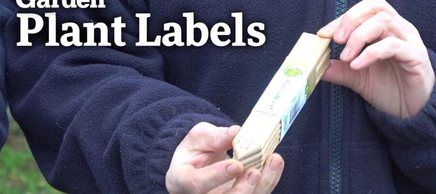 Video: Reviewing a Selection of Plant Labels