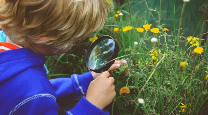 Young people's links with nature go under the microscope