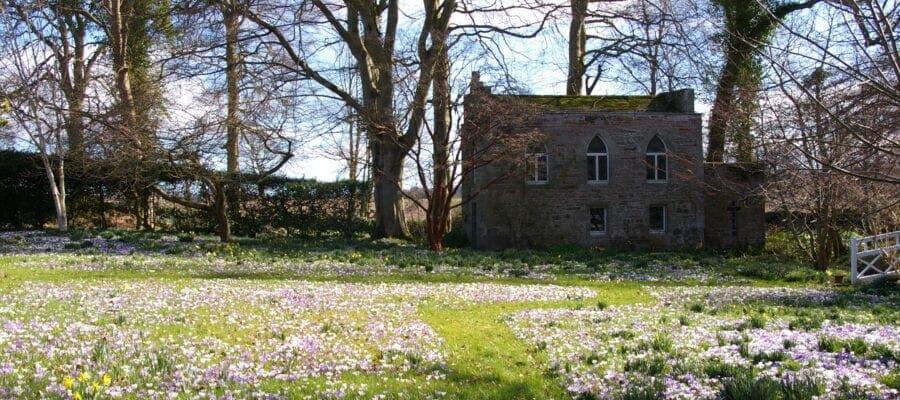 Seasonal Double Take at Scotland's Gardens