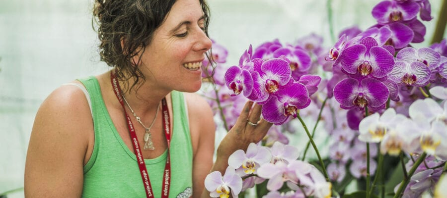 Eden braced for orchid mania
