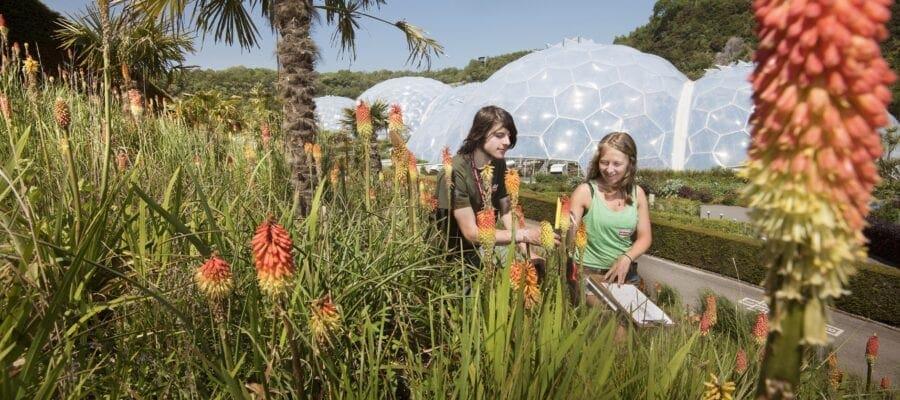 Eden's red-hot hillside wins top national award