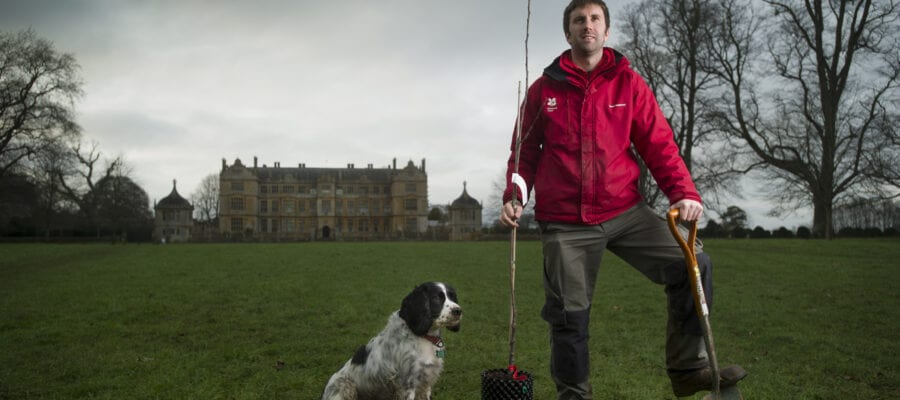National Trust puts cider apples at its core