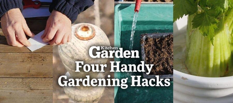 Video: Four Handy Gardening Hacks!