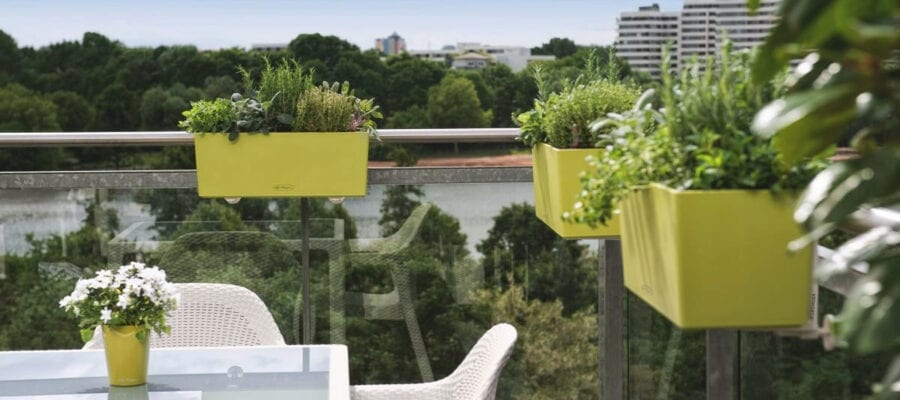 Urban agriculture; improving household growing!