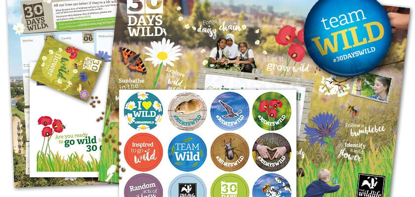 Go wild in June!