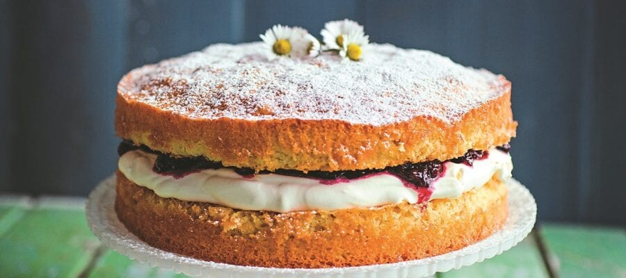 Blackcurrant Sponge