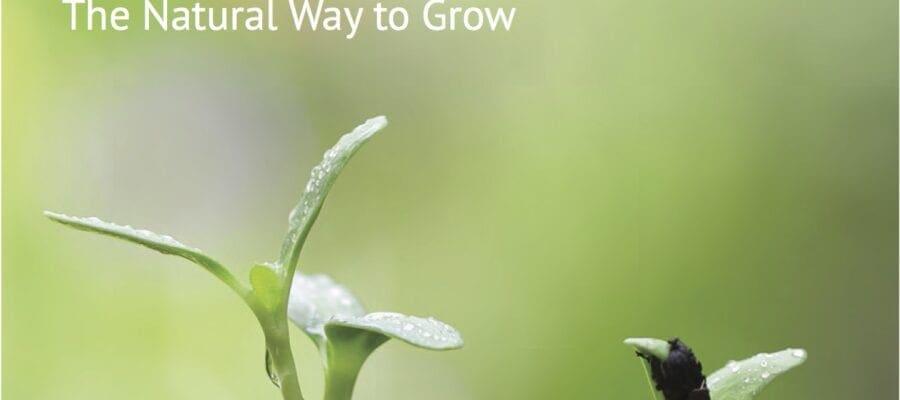 Organic in five principles