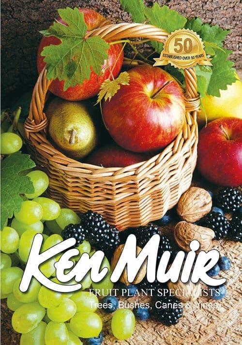 Ken Muir catalogue cover