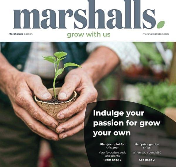 Marshalls Garden catalogue cover