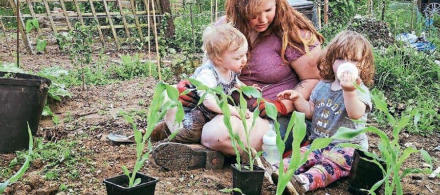 Kitchen Garden Plotter of the Month 2020