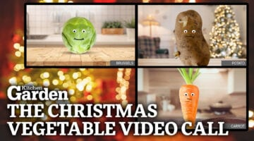 Kitchen Garden Christmas Vegetable Video Call