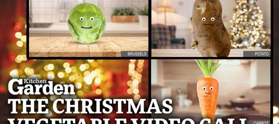 Kitchen Garden Christmas Vegetable Video Call